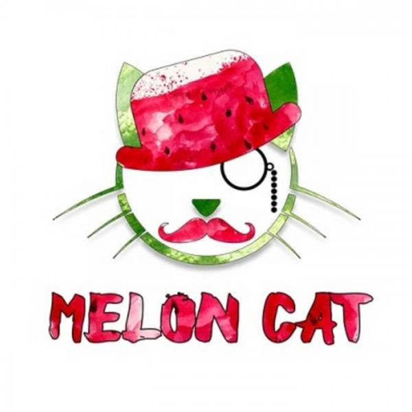 Aroma Copy Cat Melon Cat 10ml