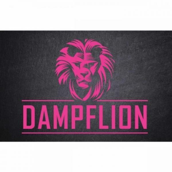 DampfLion Aroma 20ml PINK LION